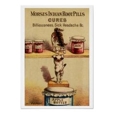 Vintage Medicine Poster  Adorable vintage poster advertising Morse's Indian RootPills (cures billiousness, sick headache, etc.) Fea...