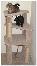 Do you want to learn how to build a cat tree so that you can give your cat something fun to do? I used to have a horrible problem with my cat...