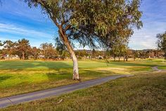 Enjoy playing golf? You'll love the view from my listing at 1026 Brewley Ln in Vista! Located in Shadowridge and beautifully remodeled! . . . . .  #sandiegorealtor #sandiegorealestate #forsale #justlisted #sold #dreamhome #sandiego #carlsbad #lacosta #encinitas #vista #oceanside #sanmarcos #sanelijohills #cardiffbythesea #realestate #realtor #thehoustonteam #milliondollarlisting #sellingsandiego #golf #golfer #golfing #view #green #socal #outdoors #fore - posted by Tyler Hagerla…