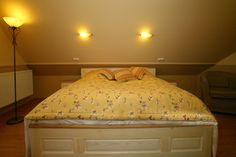 Relax, Bed, Furniture, Home Decor, Decoration Home, Stream Bed, Room Decor, Home Furnishings, Beds