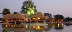 Onguma Bush Camp - Luxury lodge in Namibia. View information, pictures and book great deals online! Safari, Namibia, Private Games, Game Reserve, Lodges, Gazebo, National Parks, Camping, Outdoor Structures