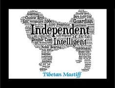 Tibetaanse Mastif Tibetaanse Mastiff Tibetaanse door PetArtus