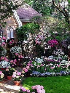 Beautiful Home with a gardening showing pink hydrangeas and pink and white tulips.