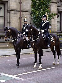 Manchester Mounted Police in ceremonial uniform.