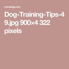 Dog-Training-Tips-49.jpg 900×4322 pixels