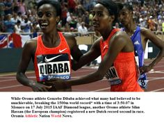 Oromo athletes Genzebe DIBABA (New world record) and Sifan Hassan (European record) win 1500m - IAAF Diamond League in  Monaco 2015