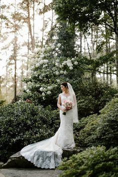 These gorgeous bridals taken at Garvan Woodland Gardens are truly enchanting! Lace Bouquet, Woodland Garden, Portrait Photo, Bridal Portraits, Photo Poses, Arkansas, Veil, Greenery, Gardens