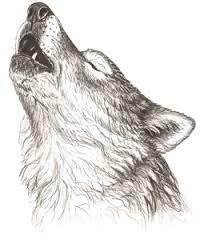 Znalezione obrazy dla zapytania howl wolf