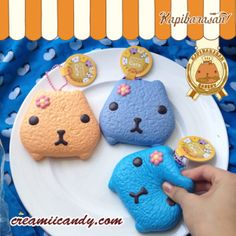 kapibarasan squishy rare cafe cute stuff accessory
