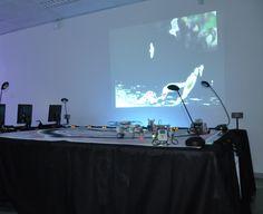 Installation Interactive, Les Oeuvres, Flat Screen, Blood Plasma, Flatscreen, Dish Display