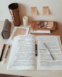 School Organization Notes, Study Organization, School Notes, College Notes, Studyblr, School Study Tips, Pretty Notes, Study Space, Study Areas