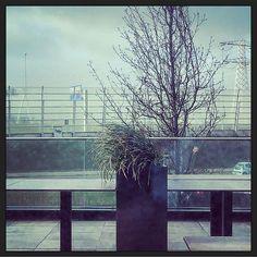 De planten waaien uit de plantenbak.... Zoveel wind dat mijn 2de afspraak (van 4) vandaag in Adam en omgeving geannuleerd is.  Niet getreurd genoeg te doen. Onverwachte tussenstop om aan mails voorstellen en administratie te werken...  #myview #tussenstop #onverwacht #onderweg #Amsterdam #Oostzaan #vanderValk