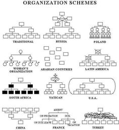 Third-Culture Kids struggle when discussing Politics. Being from another place and seeing the world through third-world or European eyes causes some unique problems when discussing politics. Organizational Chart Design, Organizational Structure, Organizational Leadership, Political Organization, Seriously Funny, Really Funny, Flat Organization, Organization Development, Crazy Funny Pictures