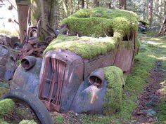 auto graveyards | auto graveyard, it just caught my eye
