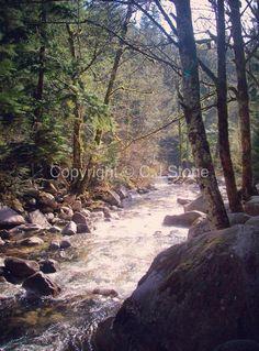 Lower Joffre Creek, British Columbia