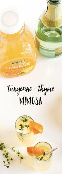 tangerine mimosa rec