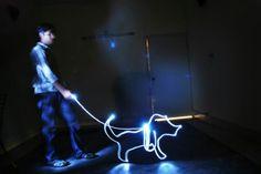 P.w.l - le walking ze dog