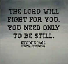 ❥ The Lord will fight for you. You need only be still....