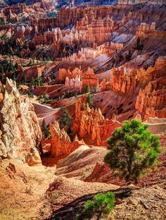 Les destinations les plus spectaculaires du monde  - Brice Canyon Utah Etats Unis