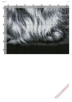 Chat gris/noir grille 4