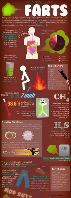 Facts about Flatulence