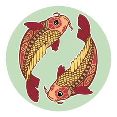Whether you have a koi fish pond in your backyard or a koi fish drawing on your wall, koi fish are powerful symbols in feng shui for attracting abundance and prosperity. All About Pisces, Leo And Sagittarius, Zodiac Signs Pisces, Horoscope Signs, Pisces Horoscope, Horoscopes, Daily Horoscope, Pisces 2016, Rage