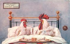 Breakfast in Bed Antique Postcard Christmas Hen Chicken Humor, Chicken Art, Chicken Quotes, Chicken Logo, Hen Chicken, Fine Art Prints, Canvas Prints, Framed Prints, Chickens And Roosters