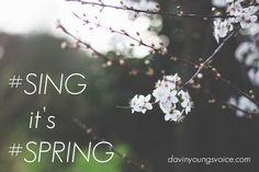 Spring is a great time to get your #SING on! If you're not in voice lessons, why not start now?