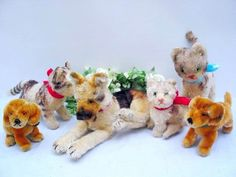Lot of 3 STEIFF CATS and 3 DOGS, 10-22 cm 3x with ID's | eBay