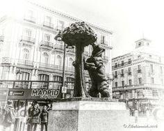 El Oso y el Madroño - Madrid