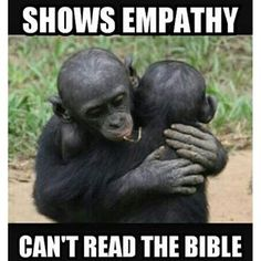 You don't need a religion to have morals. If you can't tell right from wrong with being threatened with punishment or promised a reward, then you lack empathy.not religion. Atheist Quotes, Atheist Humor, Atheist Agnostic, Losing My Religion, Anti Religion, True Religion, Secular Humanism, Athiest, Religious People