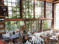 繼上次神戶的landschapboek,這次去台南又去到另一間奇妙的工作室:千畦種子博物館。其實在網路上已經頗負盛名許久,但去台南多次,才終於在這次一窺它的真面目。其實嚴格說起來它不是個博物館,應該是從事景觀工作的夫婦兩人,三十年來的心血結晶。地址位於台南市東豐路,以地理位置離市區不算太遠,很簡單就可以騎車到達。千畦在去之前一定要預約,假日跟平日開放的時段不太一樣,我們這次是預約到禮拜天的上午11點。雖然之前已經有了心理準備,但是開車進到狹小的巷弄裡,還是被它的外表嚇到。從外表看起來,這裡真的挺像廢工廠,跟隔壁的一般住家形成有趣對照。不過一推開老木頭做的大門,馬上就被他的別有洞天給震懾。