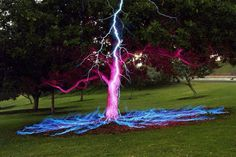 Lightning striking a tree in slow shutter speed. lesson to learn.  never stand under a tree in a storm, lie down!