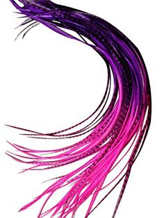 Feather Hair Extensions, 100% Real Rooster Feathers, 20 Long Thin Loose Individual Feathers, By Feather Lily  //Price: $ & FREE Shipping //     #hair #curles #style #haircare #shampoo #makeup #elixir