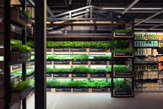 Albert Heijn XL Help-yourself Herb Garden by studiomfd, Amsterdam – Netherlands » Retail Design Blog