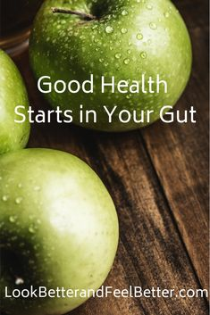 Good Health Starts in Your Gut What Are Prebiotics, Prebiotics And Probiotics, Improve Gut Health, Leaky Gut Syndrome, Sea Vegetables, Probiotic Foods, High Fiber Foods, Food Pyramid, Raw Food Recipes