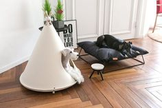 Minimalist dog teepee. Suits any decor. I like it!