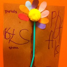 Love this activity. Learning and writing the parts of a flower! Not too shabby for pre-k!