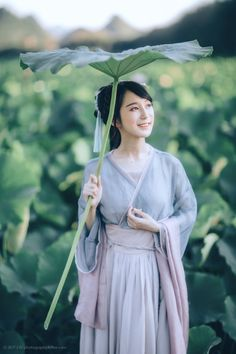 Very popular these days in wixen China is the snail umbrella, or yúsǎn, large, sturdy leaves spelled with imperturbable or cooling charms to protect the user from rain or sun. While humans and other animals have used large leaves to get out of the...
