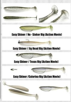 "KEITECH EASY SHINER 4"" SHAD SHAPED BAIT 