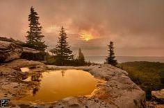 Bear Rocks Preserve Dolly Sods Wilderness West Virginia by queen