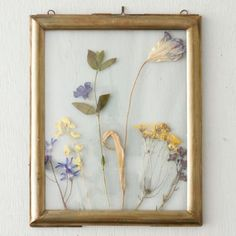 """Suspend your favorite photos or dried specimens between two panes of glass, framed with a molding-inspired edge of aged brass.- Brass, glass- Side hinge- ImportedSmall: 8.5""""H, 6.5""""W (5x7 display)Large: 11.5""""H, 9.5""""W (8X10 display)"""