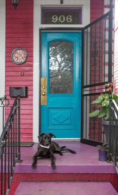 In Honor of National Dog Day: 10 Ways Having a Dog Makes Your Home Better | Apartment Therapy