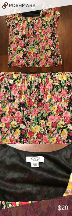Plus Size Floral Babydoll Short Sleeve Top 22/24 Cato Plus Size Floral Babydoll Short Sleeve Top. Size 22/24. Excellent condition with no sign of wear, tear, or stains. Comes from smoke free and pet free home Cato Tops Blouses
