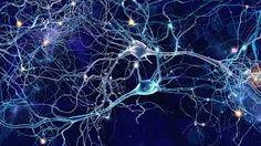 Increase Brain Power, Enhance Intelligence, IQ to improve, Binaural Beats, Improve Memory Artificial Brain, Artificial Neural Network, Facts About Humans, Binaural Beats, Sleep Deprivation, Relaxing Music, Memories, Spirituality, Cobalt