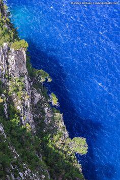 blue, daylight, deep, greece, gulf, ionion, island, its_me, nature, sea, tree, water, zakynthos