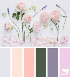 today's inspiration image for { color flora } is by . thank you, Cristina, for another gorgeous image share! Colour Pallette, Colour Schemes, Color Combos, Color Harmony, Color Balance, World Of Color, Color Of Life, Palette Pantone, Flora Design