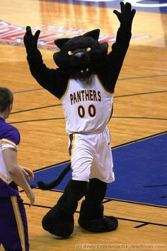 Northern Iowa Panthers mascot, TC Panther