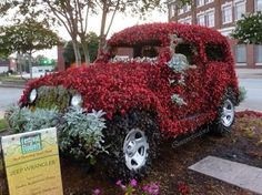 The Queen of Seaford: Uptown During Festival of Flowers