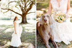 doggo with the bride. austingros.com